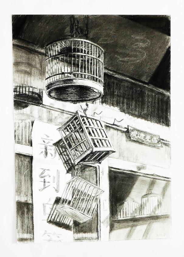 skech - Beijing Bird Cage Shop.jpg