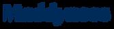 Logo madyness Bleu.png
