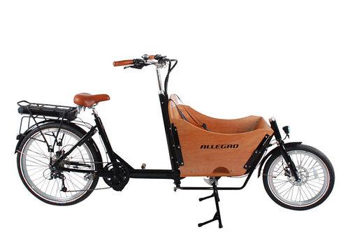 ALLEGRO - Cargo E-Bike