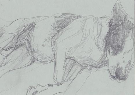 Bleistift auf Papier / pencil on paper / 15 x 20 cm