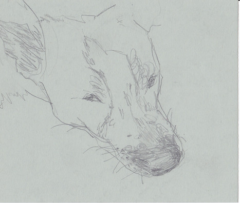 Bleistift auf Papier / pencil on paper / 20 x 20 cm