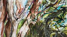 Angezogene Gegensätze – zu den Bildern der Anna Härtelt // Attracted contrasts