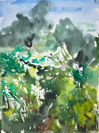 Aquarellfarbe auf Papier / watercolor on paper / 40 x 30 cm