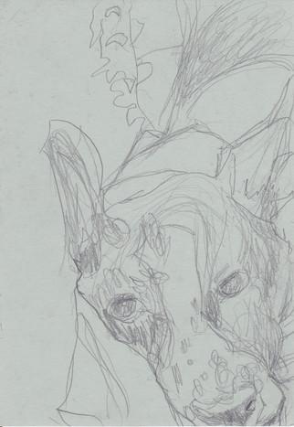 Bleistift auf Papier / pencil on paper / 20 x 15 cm