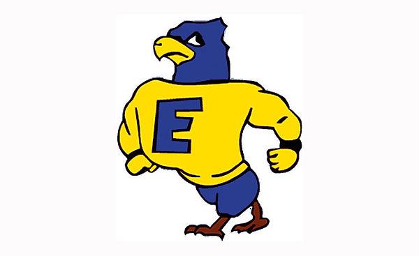 Elverado Falcons generic logo.jpg