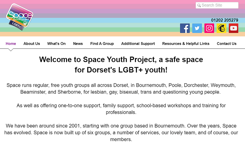 Begin image. A screenshot of the Space Youth Project website homepage. End image.