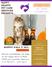 #PAWS4ASEC November Newsletter Vol.1 Issue 3