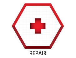 STEP 3 - REPAIR THERAPIES
