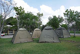 Tents in a campsite.jpg