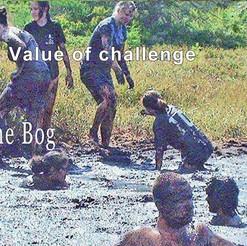 Value of Challenge