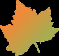 png-clipart-platanus-orientalis-autumn-l
