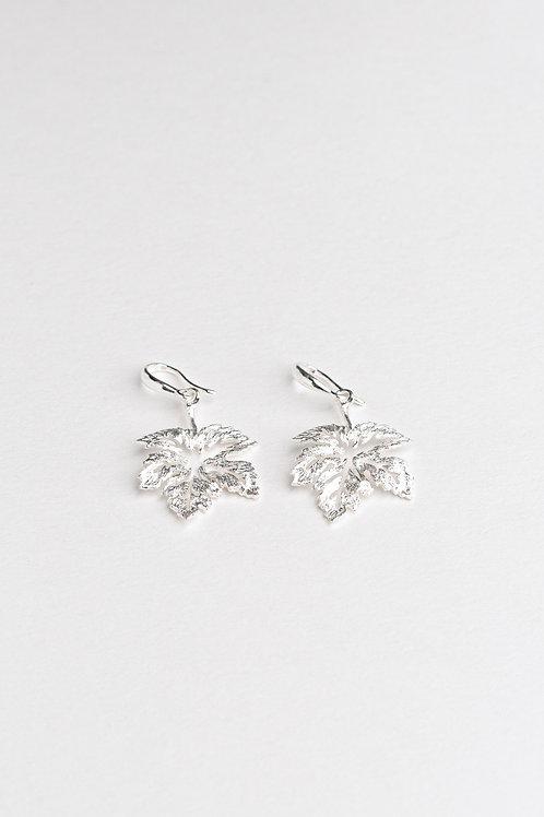 Hollowed Leaves Earrings