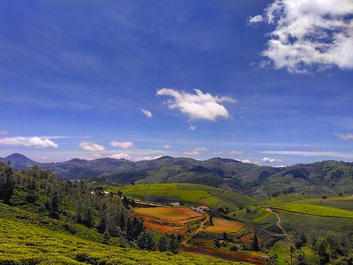 Neeru and the Nilgiris