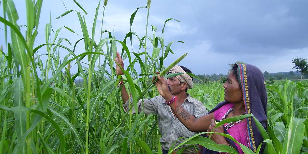 Certificate Program: Field level training on Participatory Watershed Development and Sustainable Agriculture