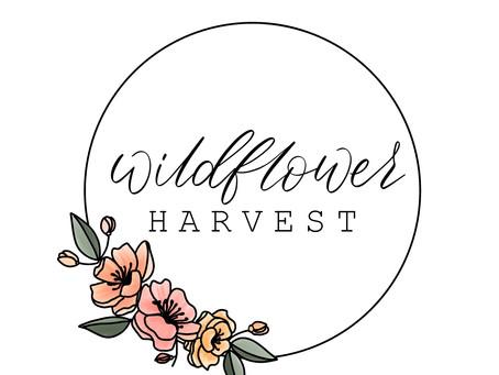 Wild Flower Harvest!