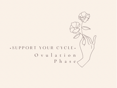 Support your Cycle - Ovulation Phase!