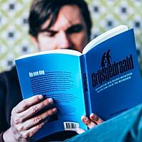 Ann Peuteman - Boek: Grijsgedraaid