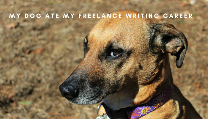 4 Reasons Why You Can't Make It As A Freelance Writer