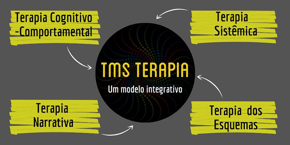 Lançamento do Curso Online TMS!