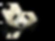 Panda Biotech Logo_Final.png
