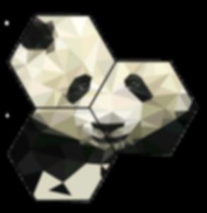 Panda%20Biotech%20Logo%20alone_Final_edi