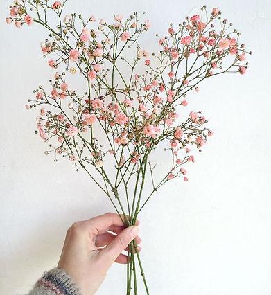 Blumen_machen_fröhlich.jpeg