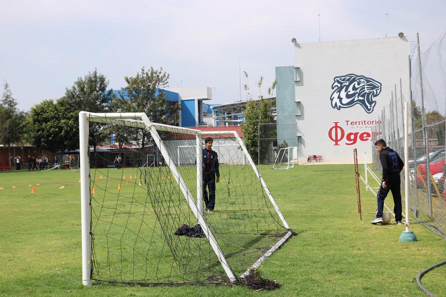 CANCHA FUTBOL PROFESIONAL