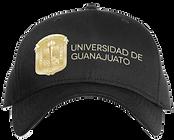 Univ de guanajuato.png