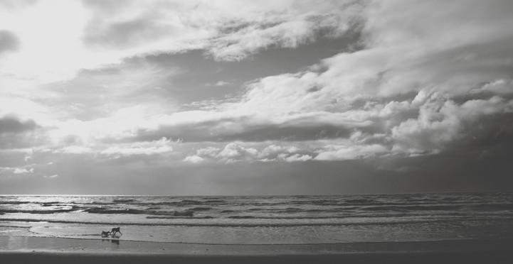 Waihi Beach 3.jpg