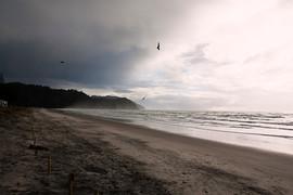 Waihi Beach2.jpg
