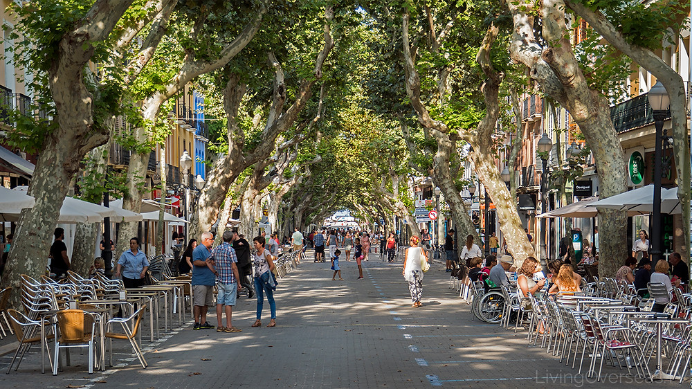 Cafe life and restaurants in Denia Spain are great for retiring in Spain.
