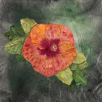 Gardner- Coral Hibiscus