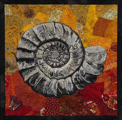 Gardner- Ammonite