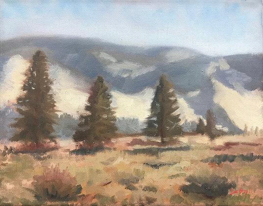 Bray- Nevada Sierra from Verdi