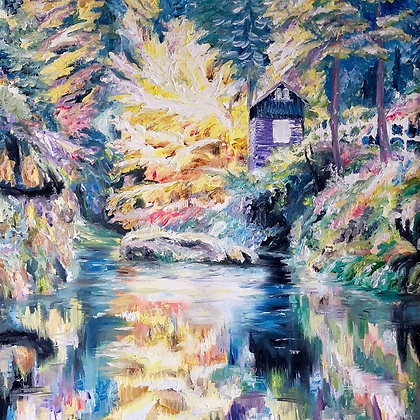 Latos- Colors at the Cabin