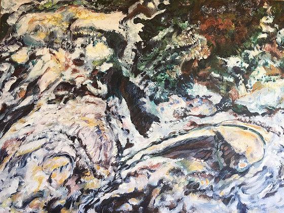 Partridge- Winter River