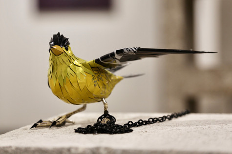 Tethered Series: American Gold Finch