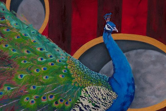 Slingland- Peacock on Red