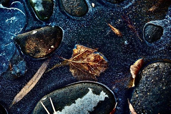 Yinger- #2150 Frozen in Time, 12/02/20