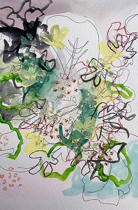 Davis- Hydrangea