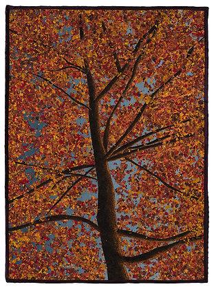 Gardner- Fall Sunset