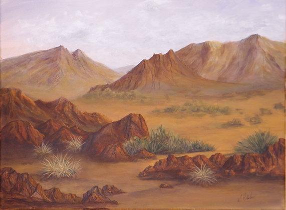 Clarke- A Desert Walk