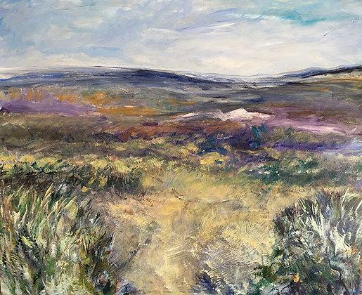 Partridge- Desert Spring