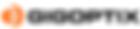 GigOptix_new_Logo.png