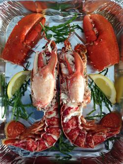 Fyne fish Dressed Lobster_edited