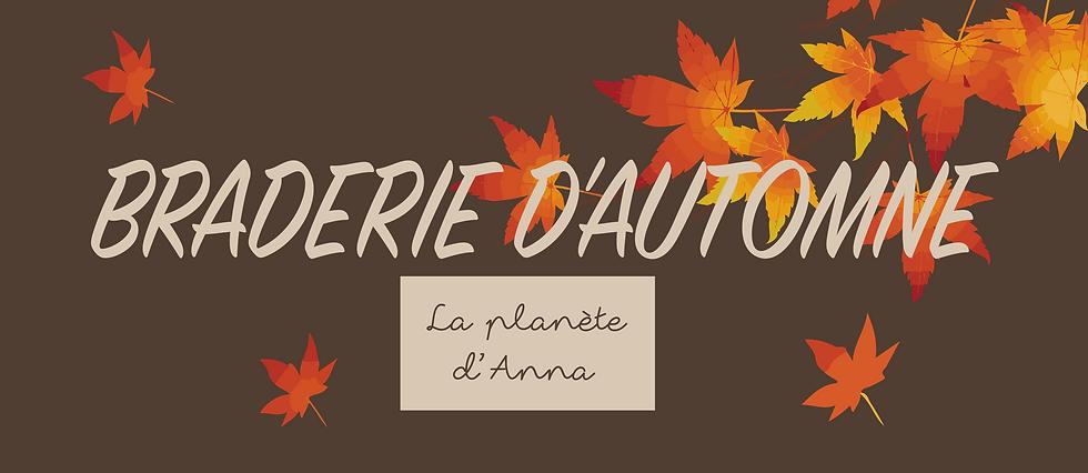 Facebook et Site Banniere Braderie d'Aut