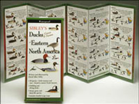 FoldingGuides: Sibley's Ducks, Geese & Swans of Eastern North America