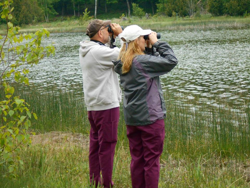 click our image to see the ABA Principles of Birding Ethics