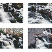 6 - virginia water closeups.jpeg