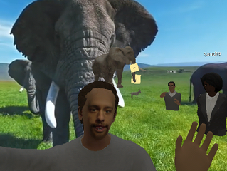 VR English Class on Safari